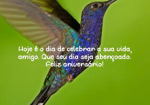 Hoje é o dia de celebrar a sua vida, amigo. Que seu dia seja abençoado. Feliz aniversário!