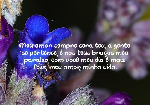 Meu amor sempre será teu, a gente se pertence, é nos teus braços meu paraíso, com você meu dia é mais feliz, meu amor, minha vida.