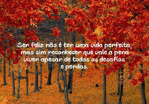 Ser feliz não é ter uma vida perfeita, mas sim reconhecer que vale a pena viver apesar de todos os desafios e perdas.